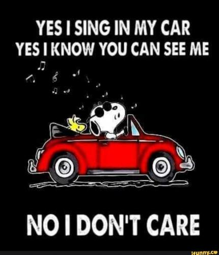 Yes  I can sing in my car